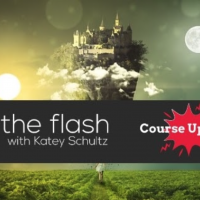 Into the Flash Course Update