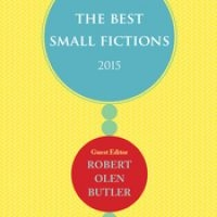 Flash Recommendation: The Best Small Fictions 2015